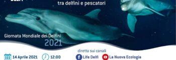 Giornata Mondiale dei Delfini, il webinar online di Life Delfi
